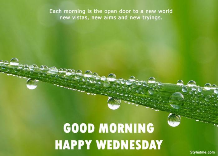 Good morning happy Wednesday