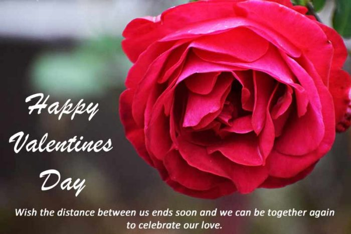 Happy Valentines Day 2020 messages cards for her