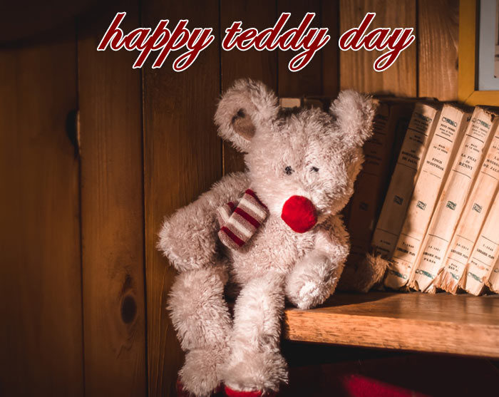 happy Teddy Day 2020 pic hd