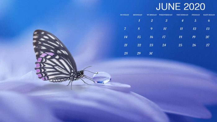 June 2020 calendar desktop pc wallpaper