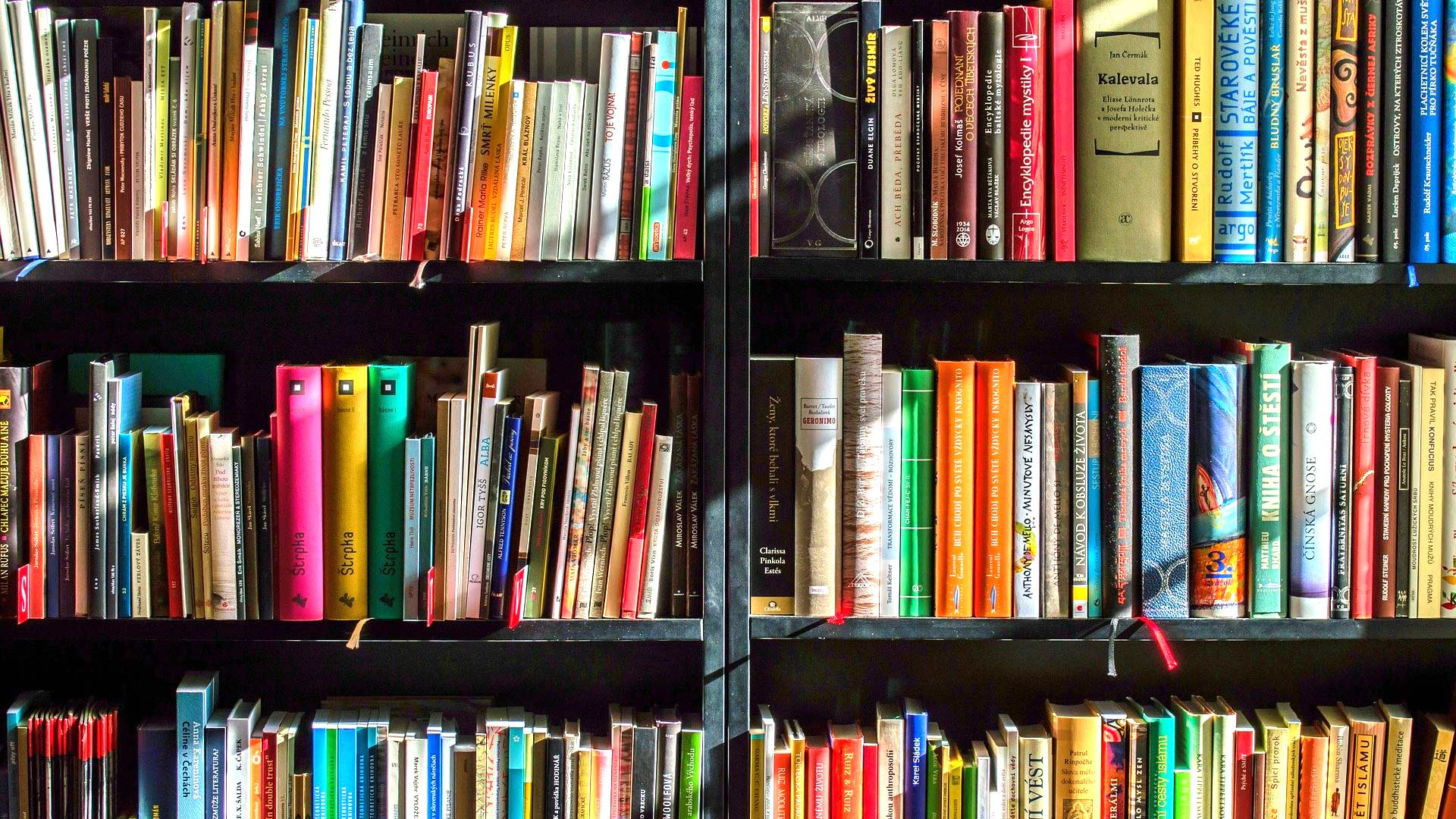 Bookcase Zoom Background Download Free Virtual Backgrounds