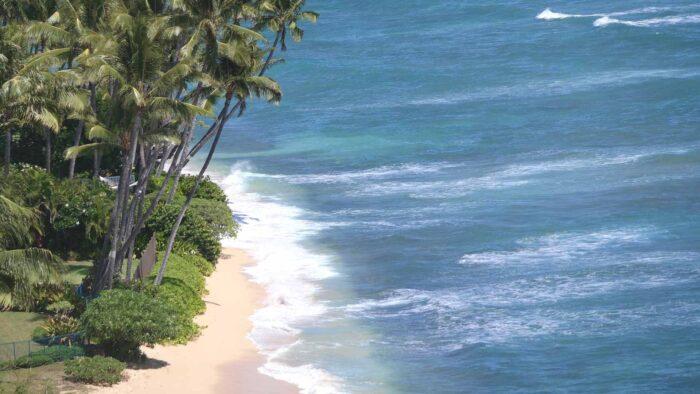 Hawaii beach zoom background
