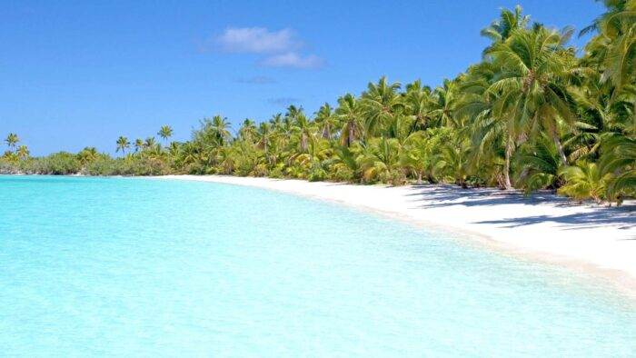 tropical beach scene zoom virtual backgrounds free