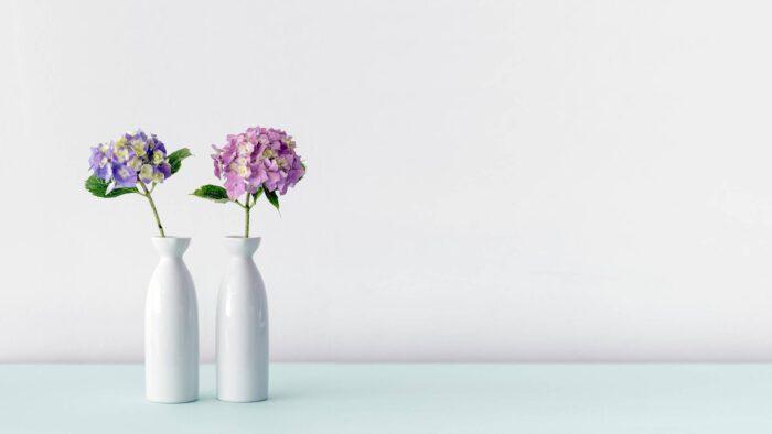 Minimalist plain ms teams background with flowers