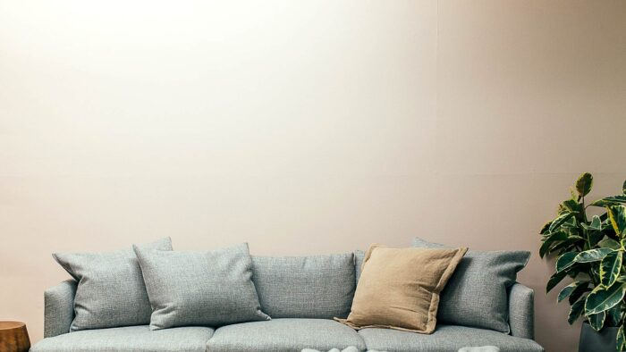 wall front sofa plant realistic teams background