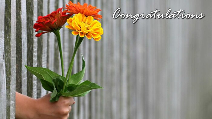 congratulations background wedding engagement virtual backgrounds for zoom meetings