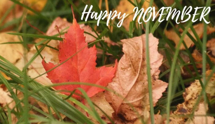 happy november 1st 2020 autumn images background