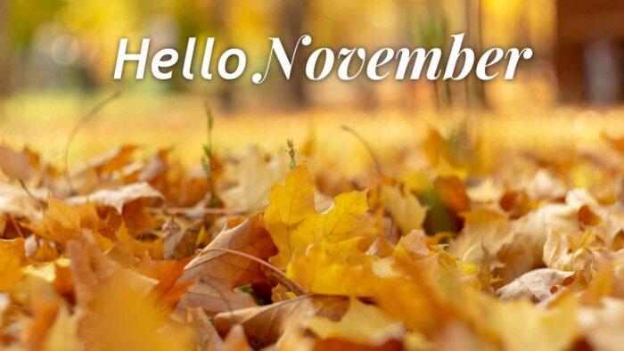hello november background free desktop wallpaper