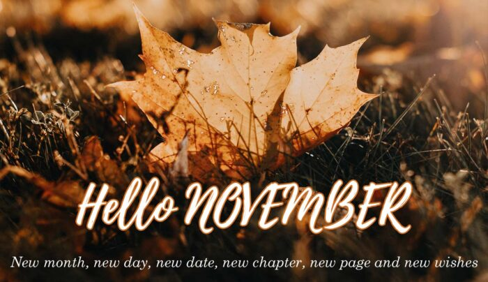 hello november quotes pictures pics 2020