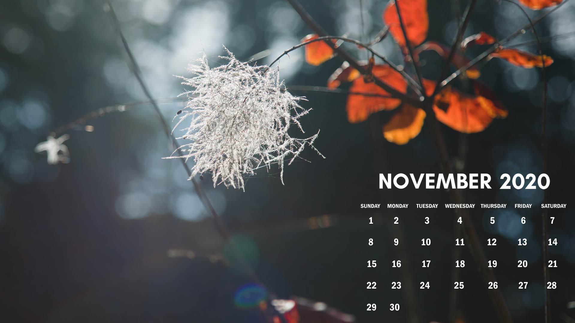 November 2020 Calendar Wallpaper For Desktop Computer Download