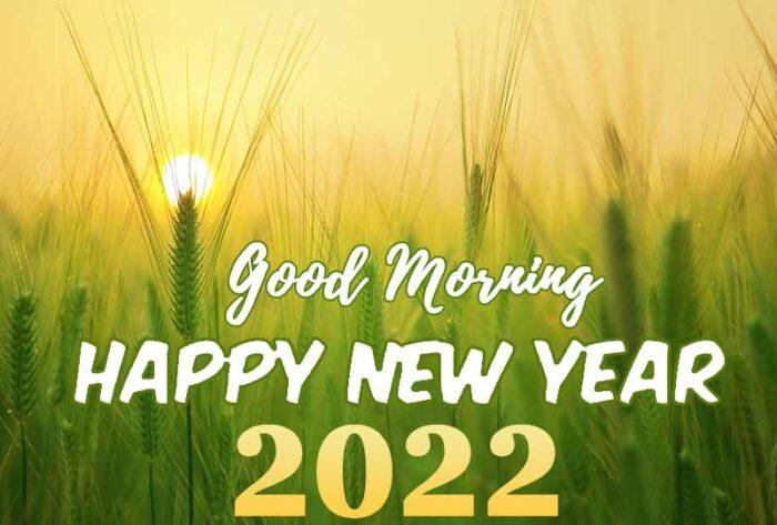 good morning happy new year 2022 photo