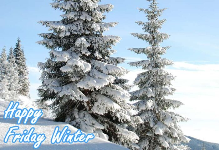 happy friday winter images morning scenes theme pics