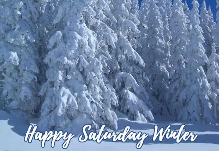 happy saturday winter images morning scenes theme pics