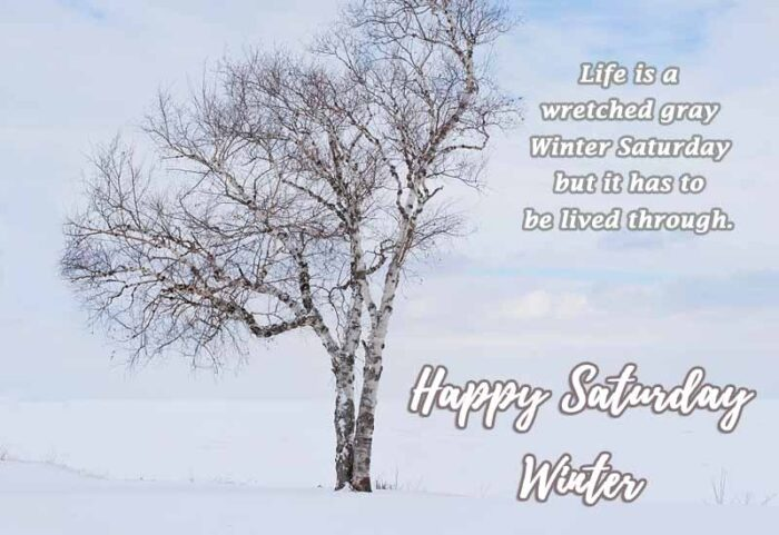 happy saturday winter quotes pictures