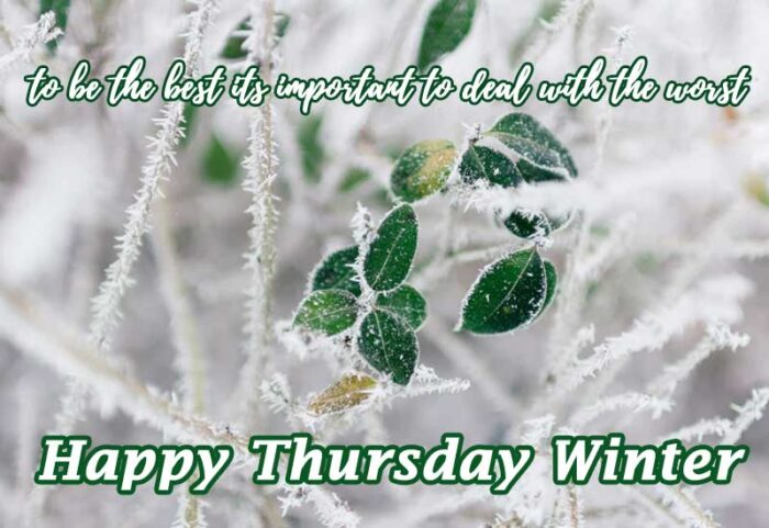 happy thursday winter quotes morning theme scenes
