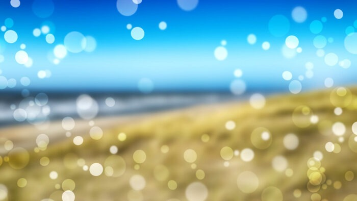 holiday zoom virtual backgrounds fun beach happy background