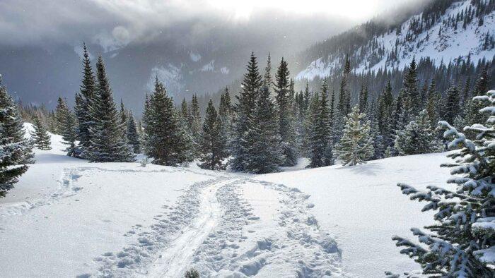winter park colorado zoom background