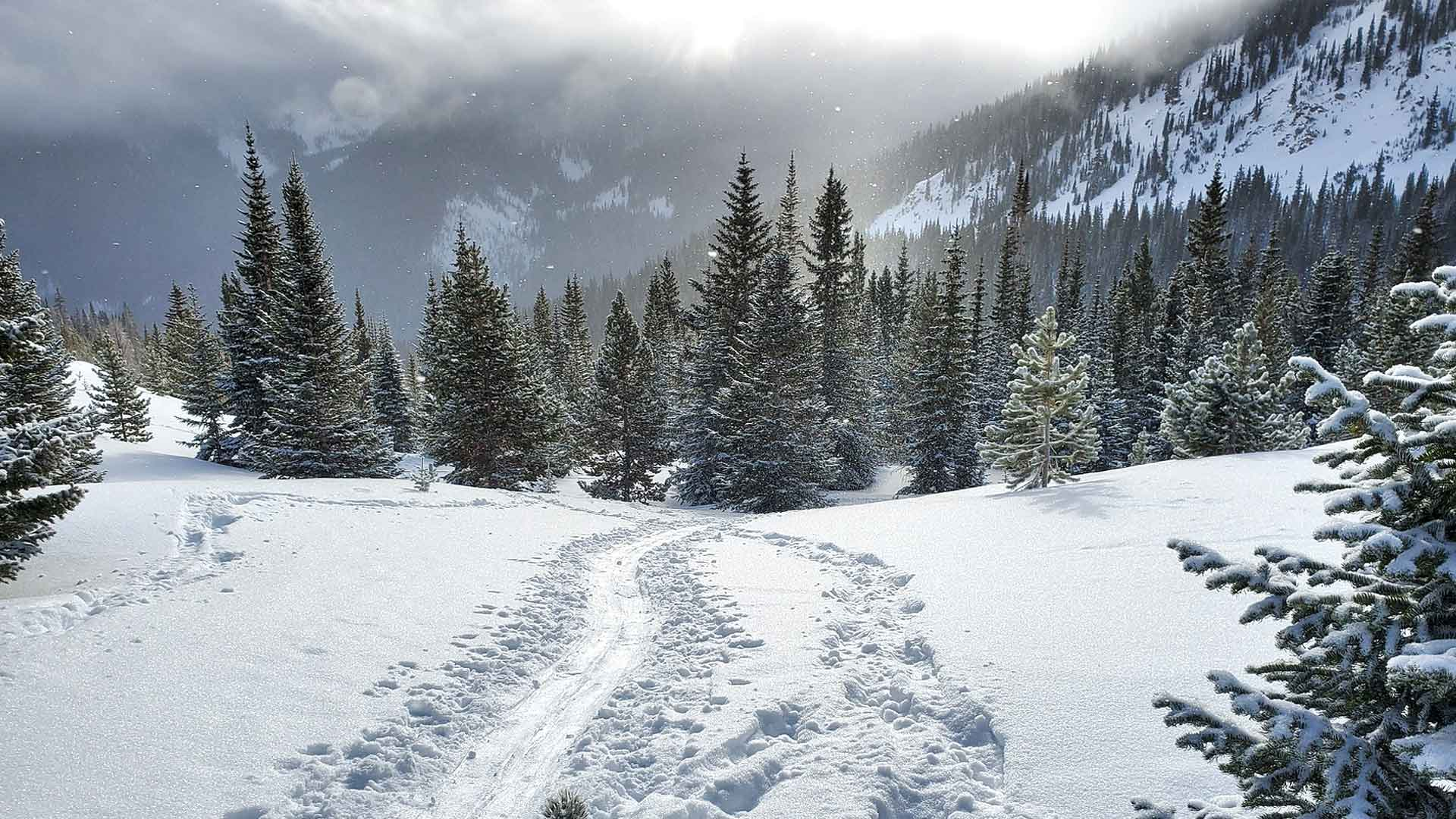 Winter Park Colorado Zoom Background Virtual Video Meeting Calls Images