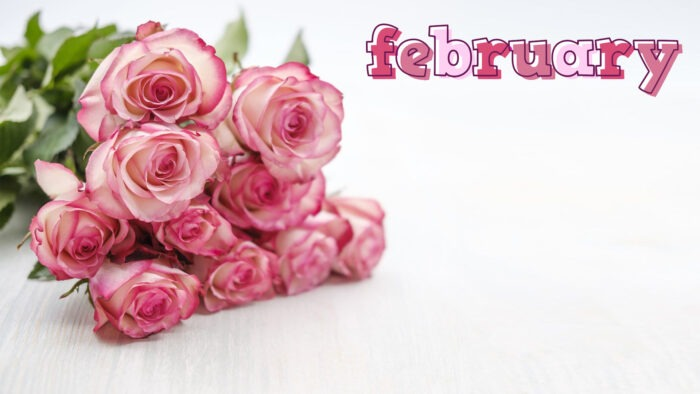 february background Microsoft teams happy month virtual backgrounds
