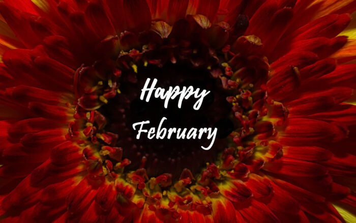 Happy February images 2021 new month free pictures