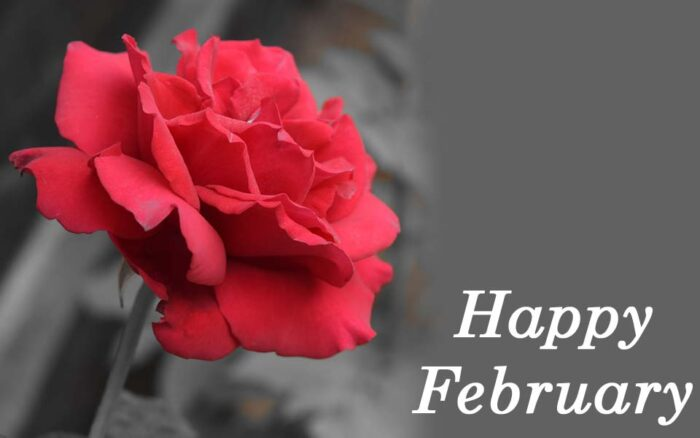 happy february pictures 2021 new month