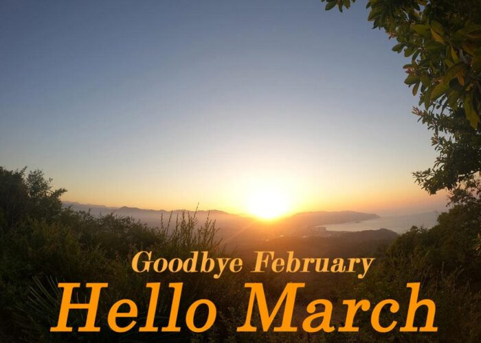 goodbye february hello march images pics pictures