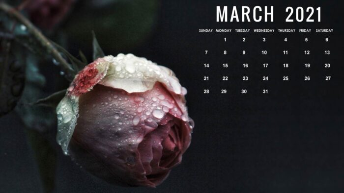 march 2021 calendar desktop wallpaper background download