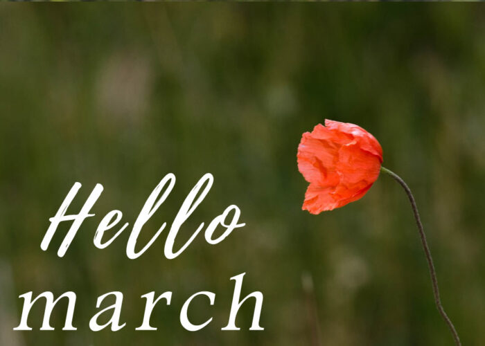 spring hello march images pics pictures