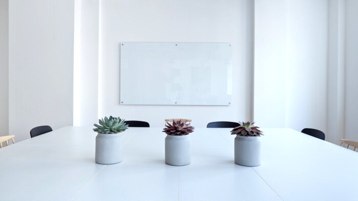 minimal zoom background simple professional office white room with plants