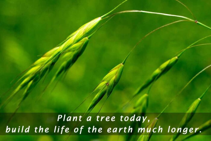 earth day pictures quotes