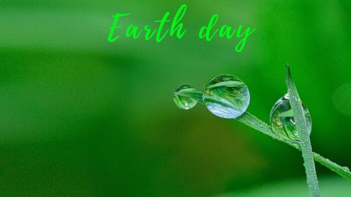earth day zoom virtual backgrounds save environment background