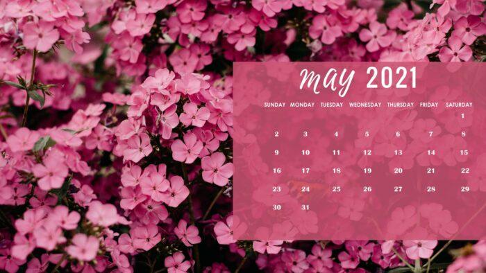 may 2021 calendar wallpaper pc desktop laptop computer floral backgrounds