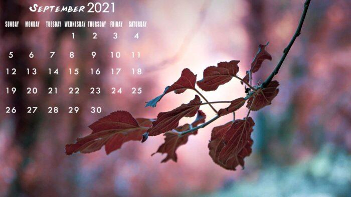 1 september 2021 calendar wallpaper sept pc desktop laptop computer backgrounds