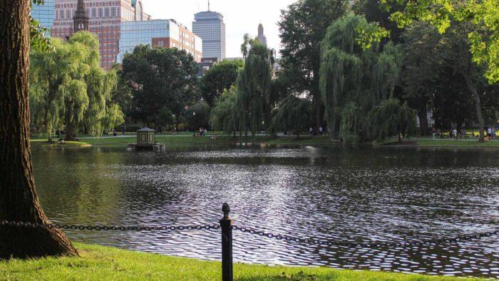boston background buildings park lake zoom virtual backgrounds