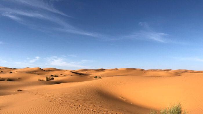 desert zoom backgrounds