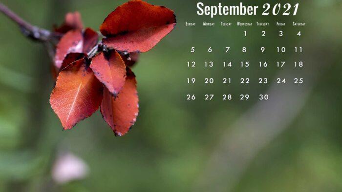 September 2021 calendar wallpaper desktop laptop computer