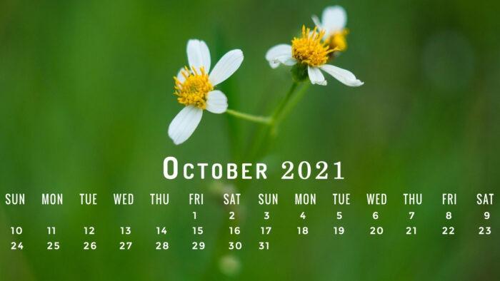 1 october 2021 calendar wallpaper sept pc desktop laptop computer backgrounds