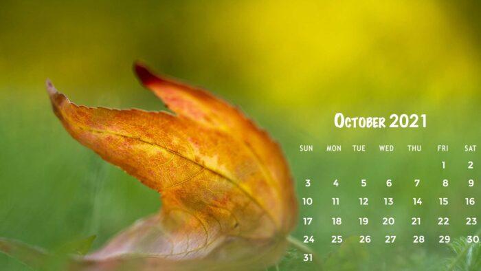 october 2021 calendar desktop wallpaper background download