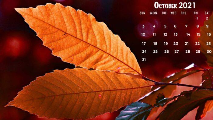 october 2021 calendar wallpaper hd background